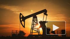 """""""Газпром"""" и Минэнерго займутся разработкой проекта газопровода через Монголию в Китай"""