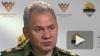 Шойгу: Россия предотвратила удар НАТО по Сирии крылатыми ...