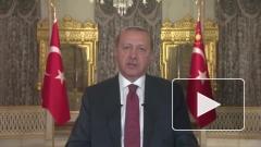 Эрдоган пообещал ускорить реализацию проекта «Турецкий поток»
