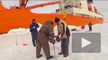 Чем Петербург может помочь в освоении Арктических ...