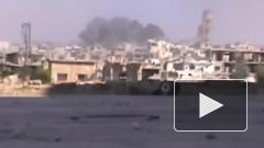 Самолеты ВКС России уничтожили скопления террористов в Идлибе