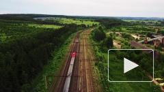 На фоне коронавируса РЖД отменяют ряд поездов, в том числе некоторые между Петербургом и Москвой