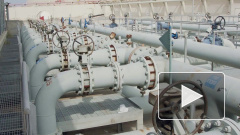Китай закупил у России 1,6 млн тонн нефти