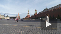 Песков огласил позицию Кремля на разговор Зеленского и Трампа