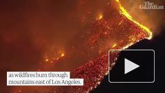 В Калифорнии горит около 10 тыс. гектаров природного заповедника