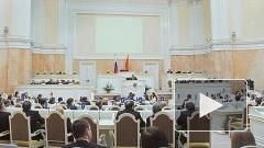 Депутаты ЗакСа обратились к Мутко по поводу инцидента с Шуниным