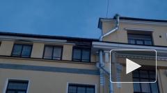 В Выборге обрушился фасад исторического здания на проспекте Ленина