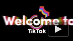 Oracle начала переговоры о покупке TikTok