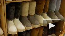 Ленинградская область возрождает ремесла. Производители валенок, изделий из лозы, старинной волховской росписи и более сотни других производств научились совмещать традиционную культуру и бизнес