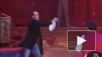 Петербургские гастроли самого титулованного клоуна в мире: Дэвид Ларибле творит волшебство и на манеже, и в жизни