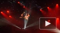 Воздушные гимнастки: головокружительная профессия