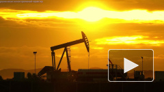 Белоруссия и Россия не договорились по тарифам на транзит нефти