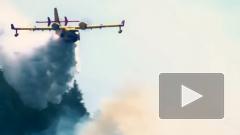 Италия поможет России в борьбе с пожарами в Сибири