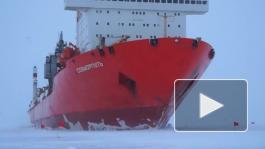 Атомные ледоколы и пассажирские суда для северных широт: Петербург расширяет свои компетенции в Арктической зоне