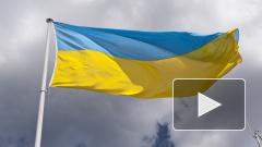 На Украине предрекли дефицит товаров