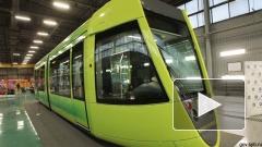 """Трансмашхолдинг"" заменит в Петербурге трамваи"
