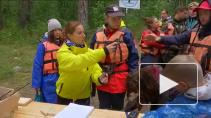 Уборка тоннами - кто чистит острова Ленинградской области?