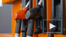 Новак пообещал стабильные цены на топливо в России в 2020 году