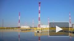 """Белоруссия готова возобновить транзит нефти через трубопровод """"Дружба"""""""