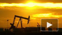 Андрей Белоусов обвинил в снижении цен на нефть «арабских партнеров»