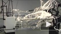 Science Art: на стыке творчества и технологий