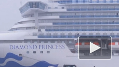 Более 20 пассажиров лайнера Diamond Princess сошли на берег без проверки на коронавирус