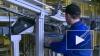 Производители молока пожаловались на Россельхознадзор