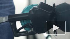 Вице-премьер Дмитрий Козак не видит оснований для увеличения цен на бензин