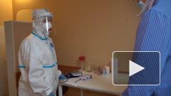Названы сроки регистрации первой российской вакцины от коронавируса
