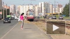 ФАС проверит тарифы на проезд в общественном транспорте после жалоб россиян