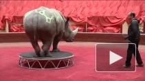 Дрессировщик Сергей Нестеров. Как научиться понимать диких животных?