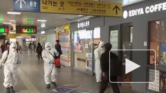 Китайские ученые обнаружили новый способ попадания коронавируса в легкие