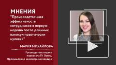 В России одобрили длинные новогодние праздники: мнение эксперта