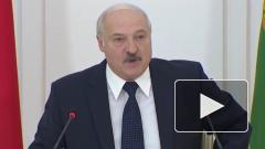 Лукашенко выразил готовность ввести миротворцев в Донбасс