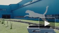 «Мечел» попросил Козака помочь вернуть вложения в Донецкий электрометаллургический завод