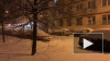 Видео из Петербурга: город ушел под снег
