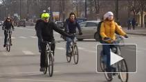 Велосипедизация Петербурга