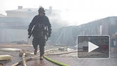 Пожар в ресторане на территории Петропавловской крепости ударит по ее директору