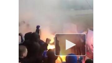 """Болельщики """"Динамо"""" устроили беспорядки на матче с """"Тосно"""""""