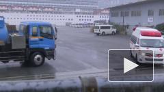 От коронавируса умерли два пассажира лайнера Diamond Princess