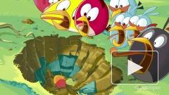 Новой версии Angry Birds на Windows Phone 7 не будет