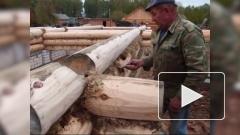 Деревянным домам в России выпишут льготы