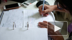 В России приняли в первом чтении законопроекты по развитию малого бизнеса