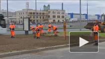 Бойцы студенческих отрядов со всей России трудились на стройках Петербурга этим летом