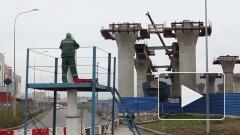 Вице-губернатор Петербурга раскритиковал новый зоопарк в Юнтолово