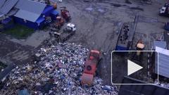 Неплатежи юрлиц в России за вывоз мусора достигли 70%
