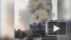 Песков подтвердил готовность России помочь в реставрации Нотр-Дама
