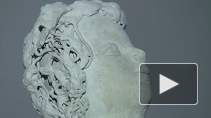 Искусство на кончиках пальцев. Как создают свои работы незрячие художники?