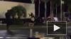 В сети появилось видео ликвидации террориста в Ницце
