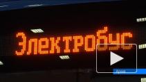 Электробус, проект солнцемобиля и мастер-классы по утилизации лампочек. Как в Петербурге экономят энергию?